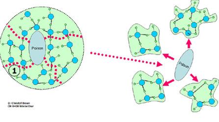 Vitalizacion-Vitalizador-GIE-reestructuracion-molecular