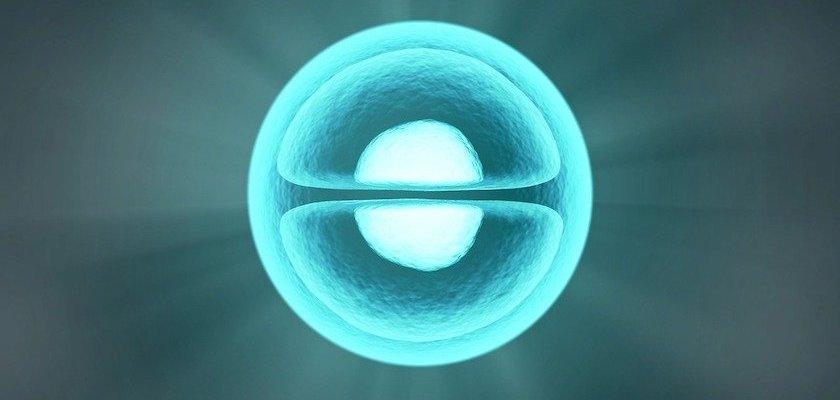 vitalizacion-como-influye-el-agua-vitalizada-a-nuestra-sangre-molecula